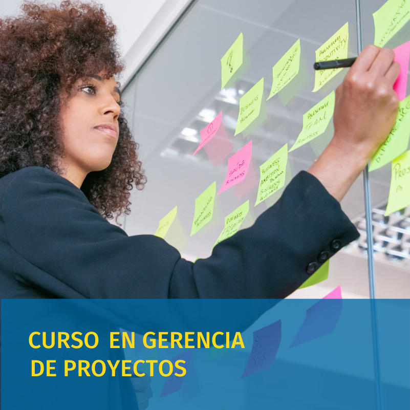 curso de gerencia de proyectos